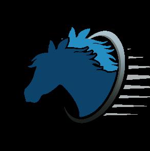 סוס- דני שקוף-org
